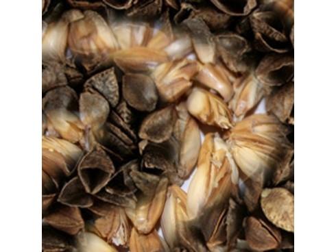 Mešane luščine (pira/ajda pakirano 1 kg)